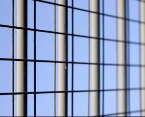 clôture ile de ré